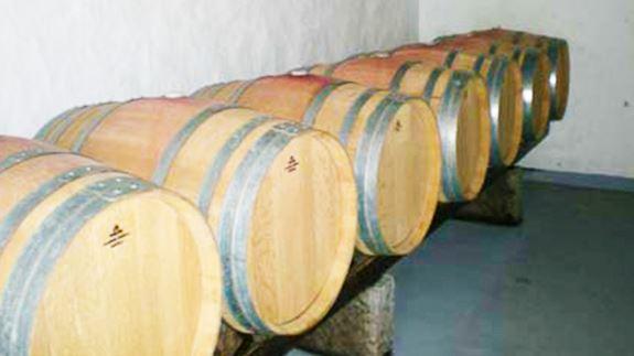 vinos-plazaperdida-inicio-2